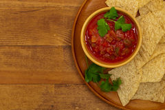 salsa royaltyfri foto