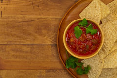 salsa royaltyfri bild