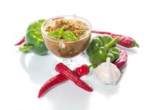 Salsa aguda del adzhika de diversos tipos de pimienta Fotografía de archivo libre de regalías