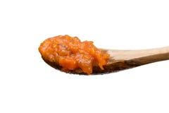 Salsa al pomodoro Fotografia Stock