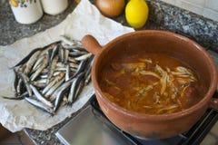 Salsa al pomodoro con le acciughe cucinate in vaso di terracotta immagine stock libera da diritti