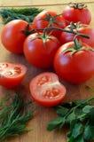 Salsa, aneto e tomates em uma placa de corte Imagens de Stock Royalty Free
