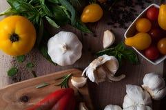 Salsa-Bestandteile lizenzfreie stockfotos