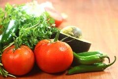 Salsa-Bestandteile der Avocado, des Korianders, der Tomaten und der Pfeffer lizenzfreies stockbild
