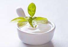 Salsa blanca Imágenes de archivo libres de regalías