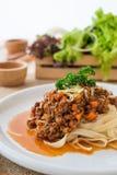 Salsa bolongnese del manzo della pasta Fotografia Stock Libera da Diritti