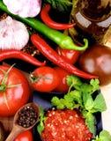 Salsa caliente de la salsa Fotos de archivo libres de regalías