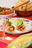 Salsa and chips stock images
