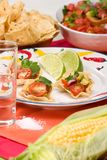 Salsa and chips stock photography