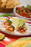 Salsa and chips Royalty Free Stock Photo