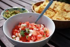 Salsa with chips and guacamole Royalty Free Stock Photos