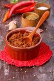 Salsa condimentada picante caliente de Adjika o del ajika foto de archivo