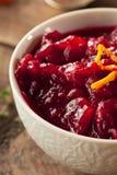 Salsa de arándano roja orgánica hecha en casa Fotografía de archivo libre de regalías
