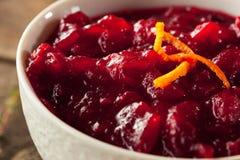 Salsa de arándano roja orgánica hecha en casa Fotografía de archivo