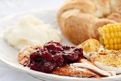 Salsa de arándano sobre la carne asada Turquía Foto de archivo libre de regalías
