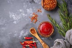 Salsa de chile con pimientas secadas Foto de archivo libre de regalías