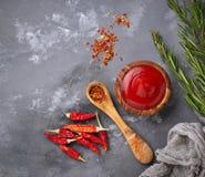 Salsa de chile con pimientas secadas Fotos de archivo libres de regalías