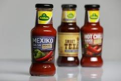 Salsa de Kuhne, espacio de la salsa de Mexiko de la copia imágenes de archivo libres de regalías