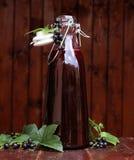 Salsa de la grosella negra Foto de archivo libre de regalías