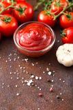 Salsa de la salsa de tomate de tomate con ajo, especias e hierbas con la cereza t Imagen de archivo libre de regalías