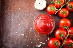 Salsa de la salsa de tomate de tomate con ajo, especias e hierbas con la cereza t Foto de archivo libre de regalías