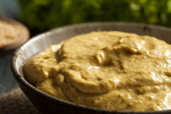 Salsa de mostaza picante hecha en casa Imagen de archivo