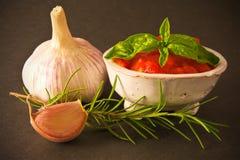 Salsa de tomate con las especias Imagenes de archivo