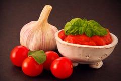 Salsa de tomate con las especias Fotos de archivo libres de regalías
