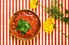 Salsa de tomate en tazón de fuente Imagen de archivo