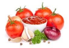 Salsa de tomate fresca y un conjunto de vehículos aislados Imagen de archivo