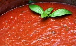 Salsa de tomate hecha en casa Imagen de archivo libre de regalías