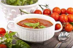 Salsa de tomate hecha en casa fotografía de archivo libre de regalías