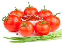 Salsa de tomate, tomates mojados y Scallions frescos Imágenes de archivo libres de regalías