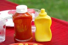 Salsa de tomate y mostaza Imágenes de archivo libres de regalías