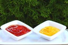 Salsa de tomate y mostaza imagenes de archivo