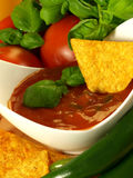 Salsa delicious sauce Royalty Free Stock Photography