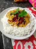 salsa dell'alimento del pepe del riso di curry immagini stock