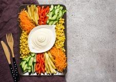 Salsa della maionese ed insieme casalinghi delle verdure variopinte Capra russa dell'insalata nel giardino Vista superiore con lo Fotografia Stock Libera da Diritti