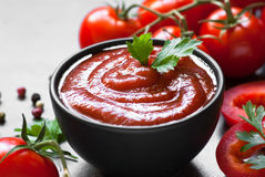 Salsa della salsa ketchup Immagini Stock