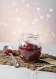 Salsa di mirtillo rosso Immagini Stock