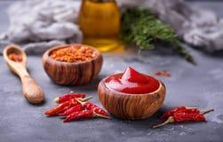 Salsa di peperoncino rosso con i peperoni secchi Immagine Stock Libera da Diritti