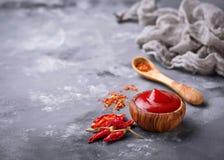 Salsa di peperoncino rosso con i peperoni secchi Fotografie Stock