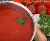 Salsa di pomodori fotografie stock libere da diritti