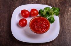 Salsa di pomodori casalinga Immagine Stock
