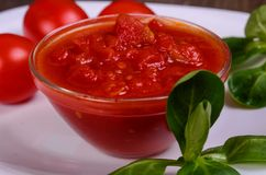 Salsa di pomodori casalinga Immagine Stock Libera da Diritti