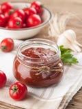 Salsa di pomodori (ostruzione) Fotografia Stock