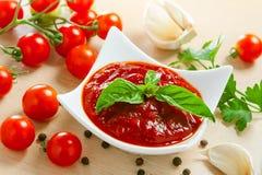 Salsa di pomodori rossa fotografia stock libera da diritti