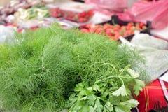 Salsa e aneto Ervas frescas, org?nicas, do jardim, do aneto e da salsa Vitaminas verdes detox Ervas arom?ticas para a salada Come imagem de stock