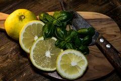 A salsa e o limão são preparados para uma refeição deliciosa imagens de stock