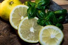 A salsa e o limão são preparados para uma refeição deliciosa fotografia de stock